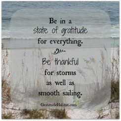 be-in-a-state-of-gratitude-for-everything-life-daily-quotes-sayings-pictures