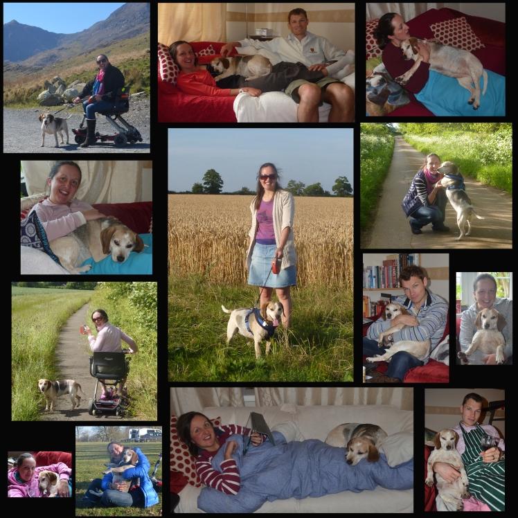 Lottie blog collage copy