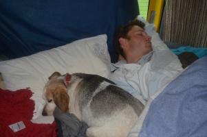 Lottie sleeping in our bed!