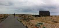 Winchelsea walk