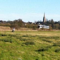 A train in a field!