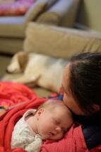 Sleepy cuddles!