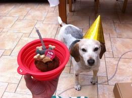 Lottie's birthday!