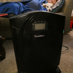 My brilliant air purifier!