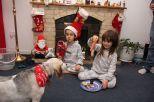 Mincepies for Santa!