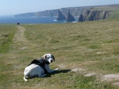 Lottie at Duncansby Head