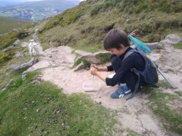 Collecting insects whilst climbing the mountain