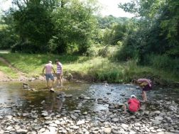 Playing in the river in the day time