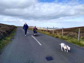 The mountain roads