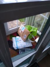 Mail in quarantine in the porch!