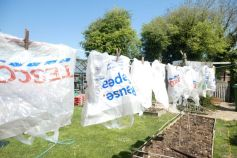 Washing the carrier bags...